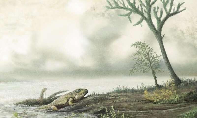 Cell:重大发现!抗生素耐药菌或在恐龙时代前的4.5亿年前就已产生