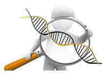 研究首次发现与神经性厌食症有关的基因位点