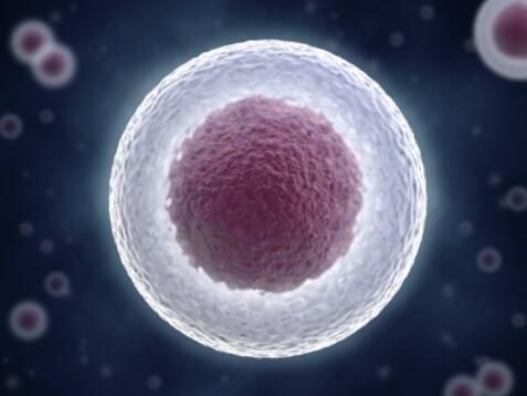 近期干细胞领域突破性研究进展一览