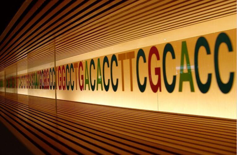 近期全基因组测序研究进展一览