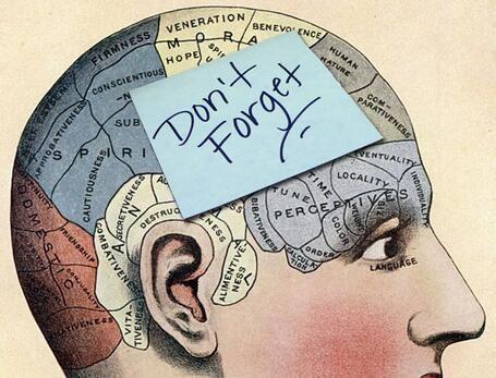 想要有效提高记忆力?这么做就对了!