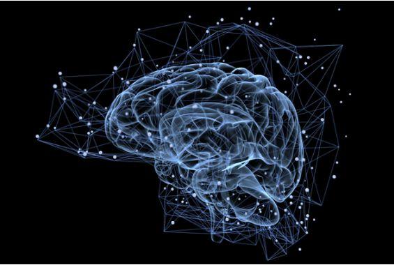 """科学家用AI开发""""读心术"""":已能重构大脑中的文字"""