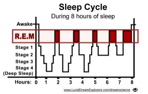 【Nature重磅】失眠?可能是这些细胞不配合!科学家用病毒示踪和RNA测序精确定义了睡眠神经元