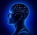 BOLD-fMRI技术在睡眠剥夺中的应用研究进展