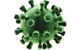 李太生团队绘出艾滋乙肝共感染分布图