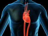 冠状动脉支架的宝石能谱CT评价价值