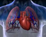 神经源性肺水肿