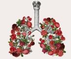 对慢性阻塞性肺疾病防治全球倡议2017更新的几点看法