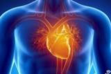 ARDS患者急性肺源性心脏病-右心室保护的基本原理