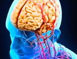 甲氨蝶呤联合其他药物治疗原发中枢神经系统淋巴瘤研究进展