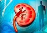 血液透析血管通路的选择和起始时机