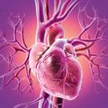 冠状动脉狭窄的CT功能评价技术进展