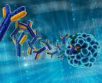 C 反应蛋白与超敏C 反应蛋白的检测及其临床意义