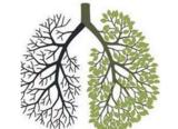 肿瘤居北京市民死因首位,肺癌发病率第一