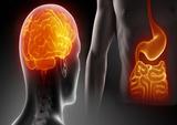 综述|肠道微生物与神经变性疾病