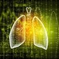 体素内不相干运动MRI在肺部占位性病变中的应用研究进展