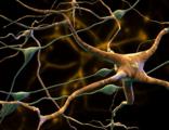答疑解惑|化疗引起的周围神经病变怎么破?