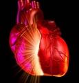 心肌应变的磁共振成像测量与临床应用