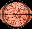急性缺血性脑卒中患者多模式MRI检查进展