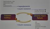 [EASD2017]热点话题:糖尿病心血管并发症相关机制