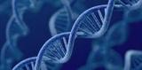 不同类型糖尿病与遗传,看这篇文章就够了!