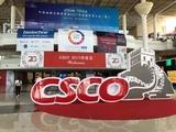 【CSCO 2017】马军教授解读《大剂量甲氨蝶呤-亚叶酸钙解救疗法治疗恶性肿瘤指南》