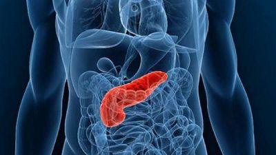 胰腺癌研究进展一览