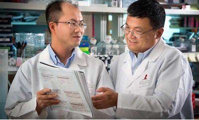 华人科学家研究进展一览