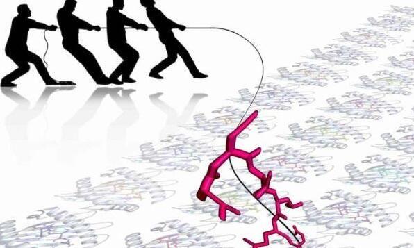 HIV如何逃脱机体免疫系统的监视?