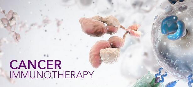 深度解读癌症、炎症与免疫的恩怨情仇!