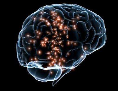 Science:大脑记忆形成的新机制