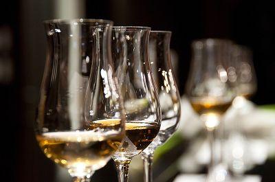 免疫系统如何影响饮酒行为?