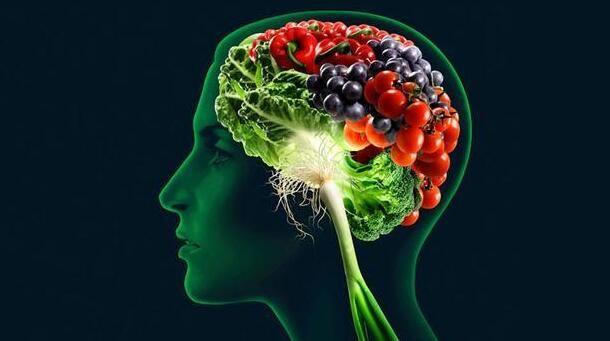 2017年诺奖预测:脑成像重磅级研究解读
